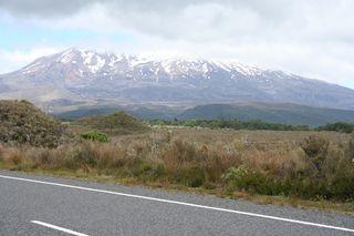 NZ2013 012