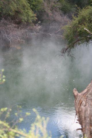 NZ2013 036