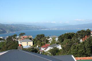 NZ2013 056