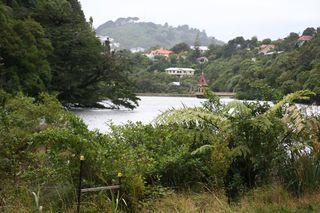 NZ2013 144